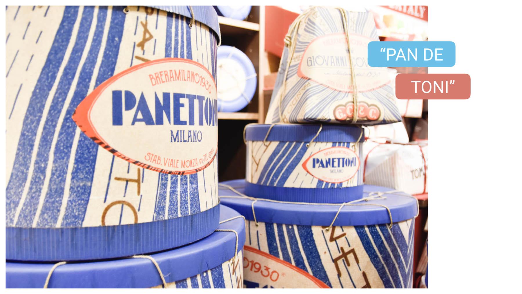 Typical food in Milan - milano bike tour - panettone